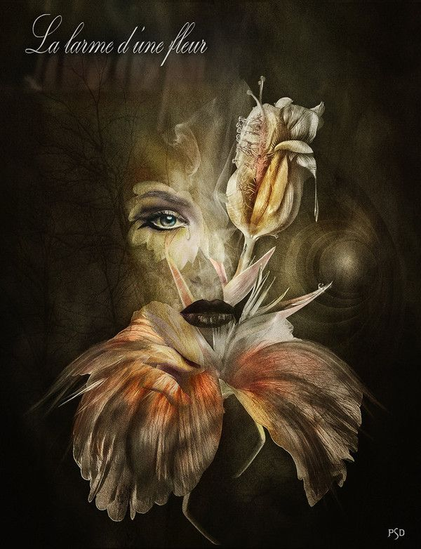 La larme d'une fleur... by PSD-Graphics